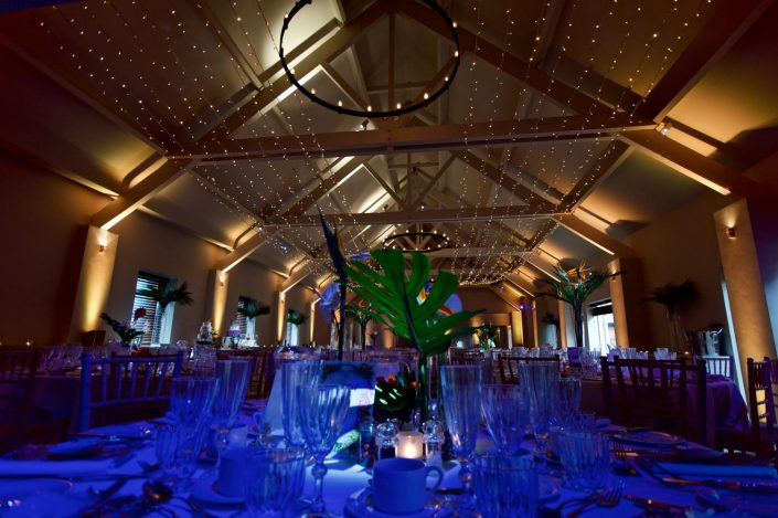 Stoke Place wedding lighting uplighting pin-spotting fairylight canopy