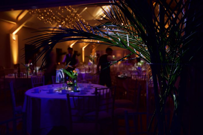 Stoke Place wedding party event lighting - fairylight canopy, uplighting, pinspotting, exterior garden lighting