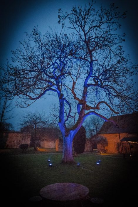 Notley Abbey table lighting, fairylights, wedding candles, tree lighting