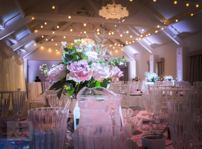 Stoke Place wedding party and event lighting with festoons and pea lights